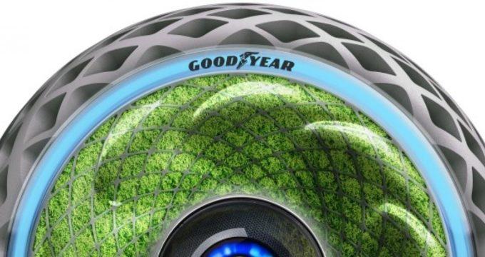 Nuovi pneumatici green ecologici: Goodyear Oxygene con muschio - Furgone No Problem
